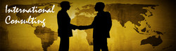 International Consulting Banner