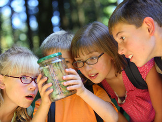 Summer camps for your special needs child