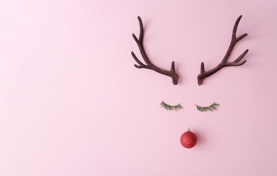 Christmas reindeer concept made of everg