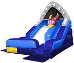 Shark Escape Water Slide
