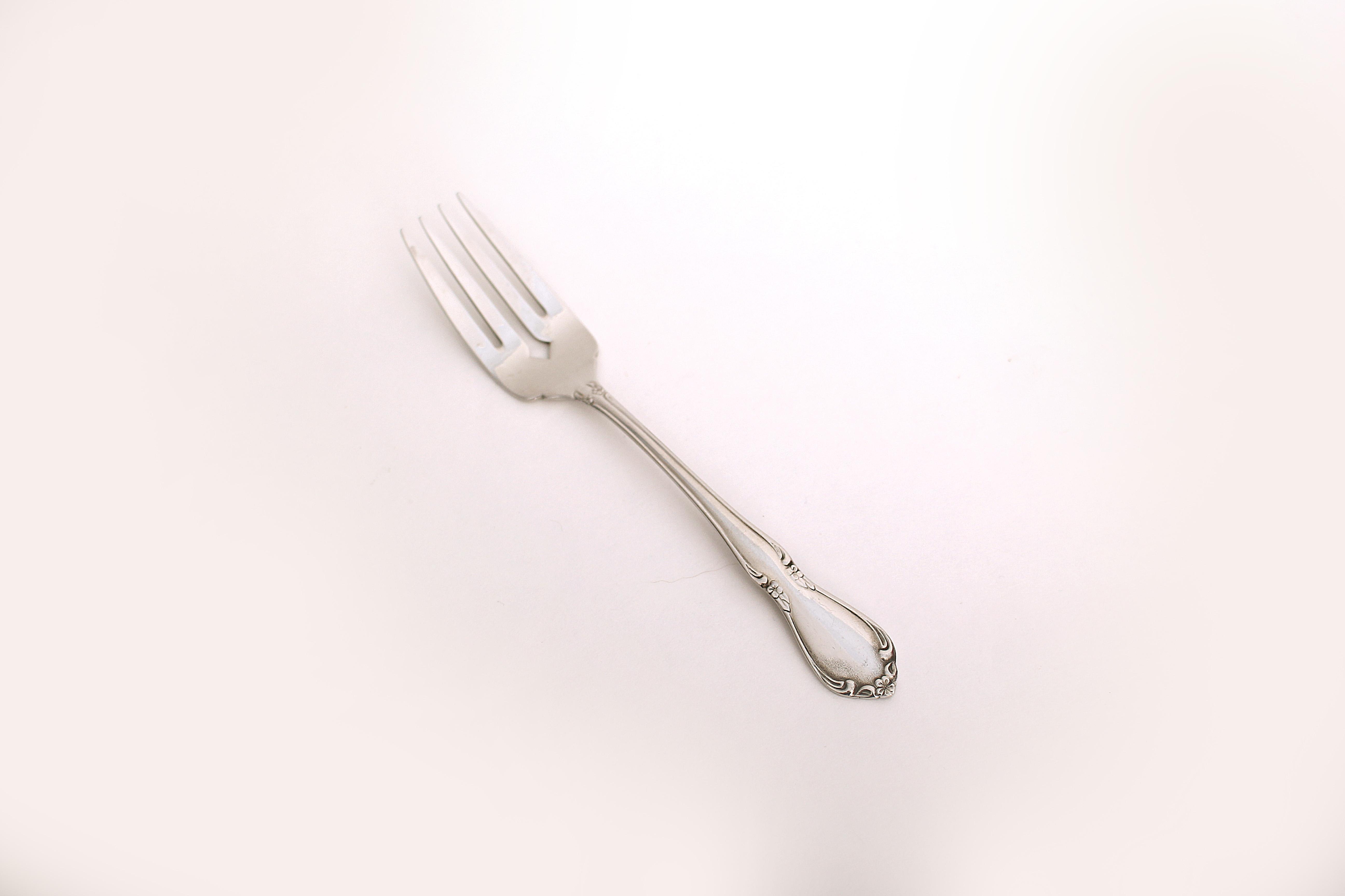Chateau Dinnerware Salad Fork