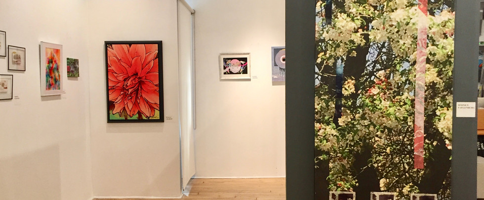 gallery view 15