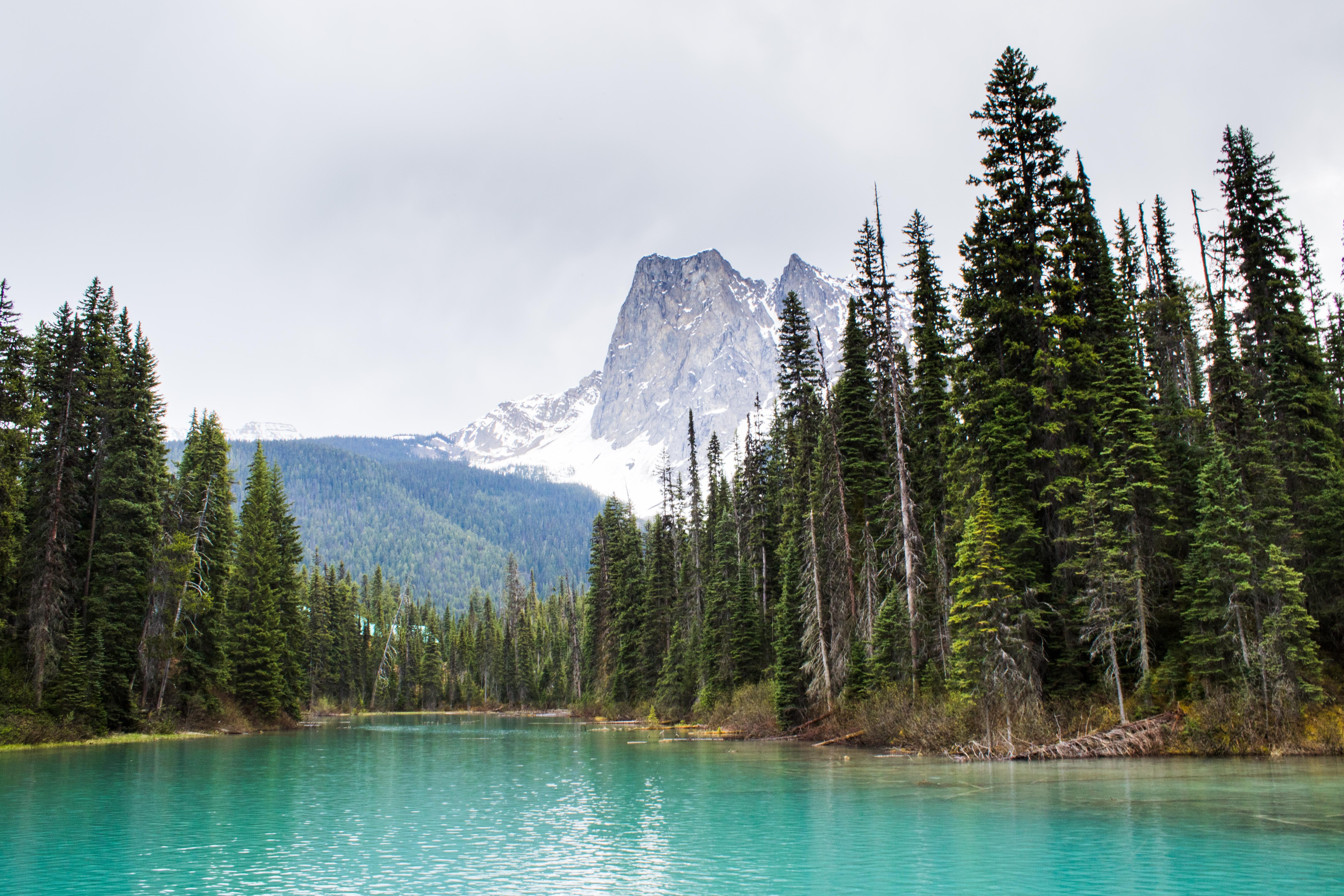 Emerald Lake - 1