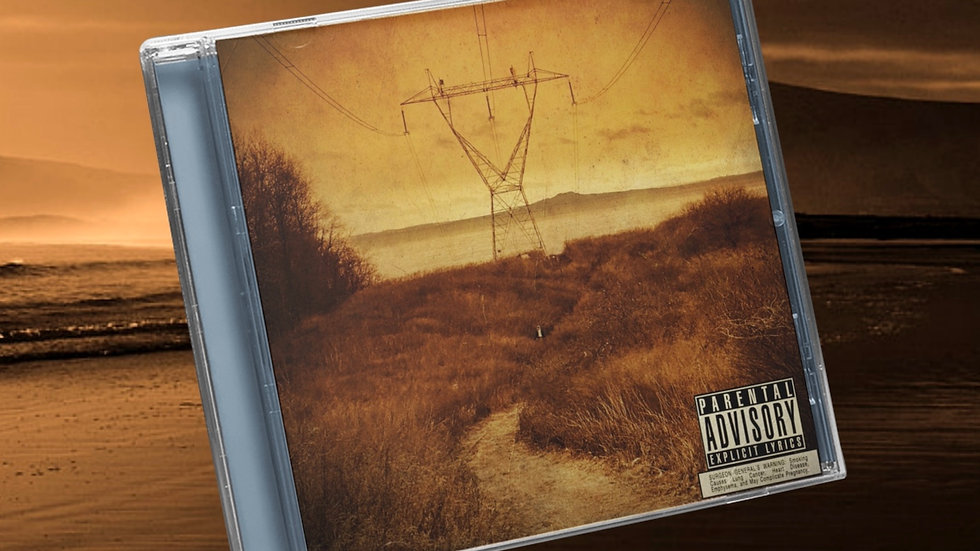 The Plot Thickens CD