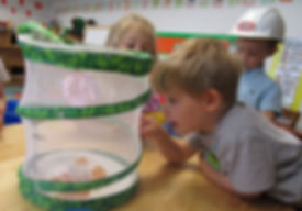 2-Year-Olds exploring at ECC