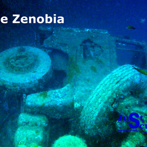 One of the many lorry's on the Zenobia