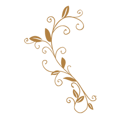227-2279647_decorative-scroll-png-free-g