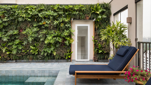 Projeto Horizonte Verde