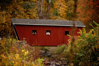 engaged couple in windows of covered bridge at Kent falls