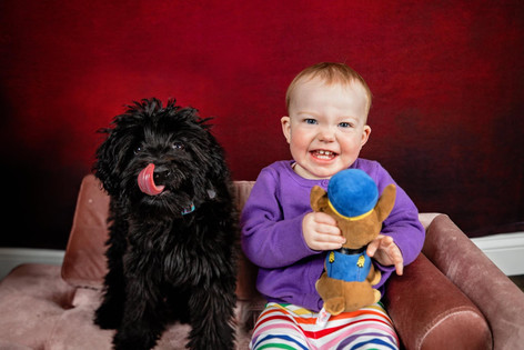 Black dog sitting on a pink couch with a toddler