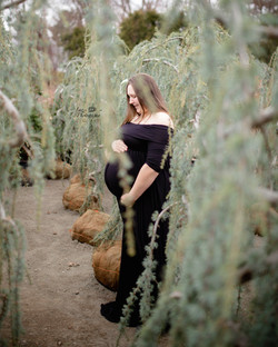 Elise Gown ~ Black