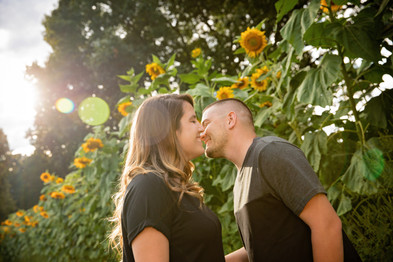 engaged couple about to kiss in front of sunflowers during golden hour