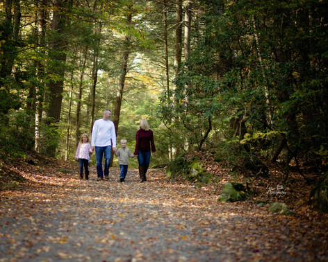 family shoot walking down a path holding hands
