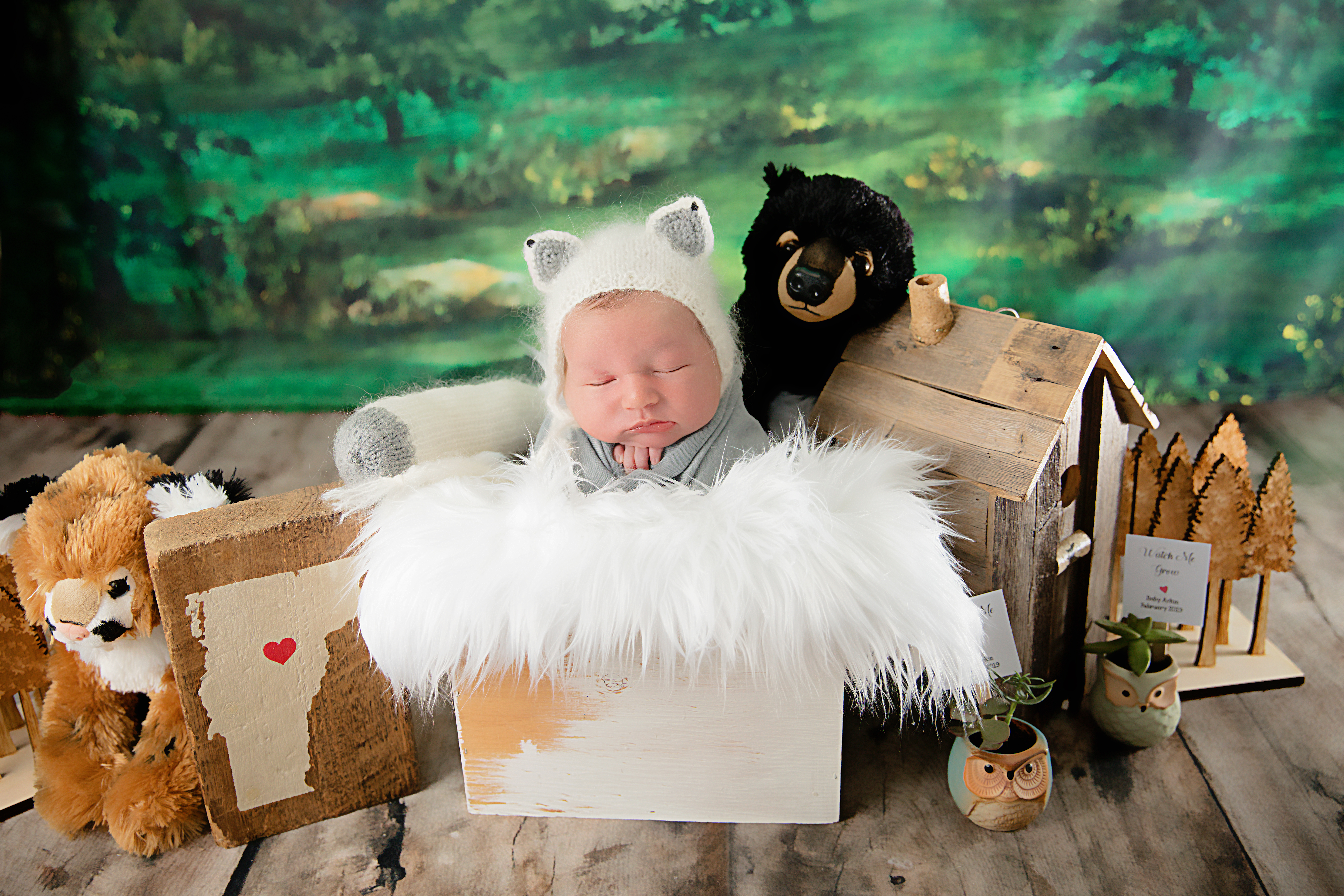Newborn-6064