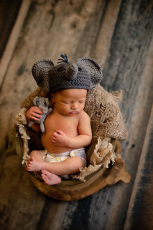 Sleeping newborn hold stuff elephant in bucket