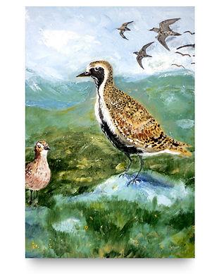 original painting - birdonrock.jpg