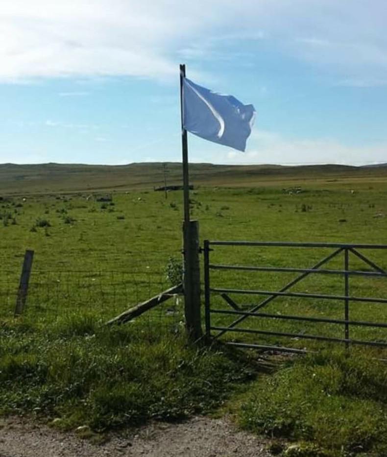Single white flag