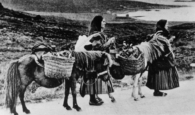 Shetland women and horses