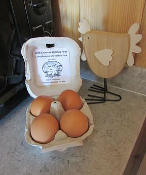 Kitchen Local Eggs.jpg