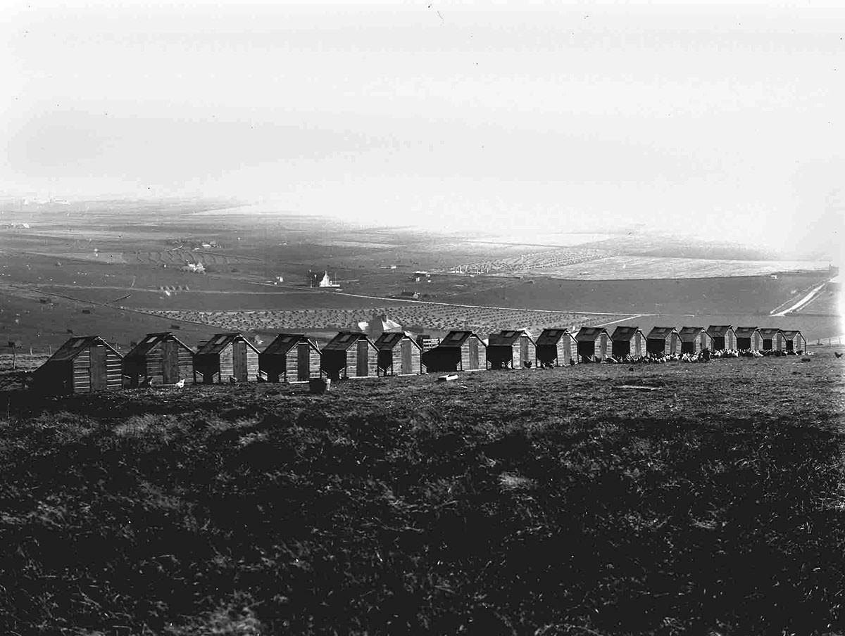 Hen houses in Orkney