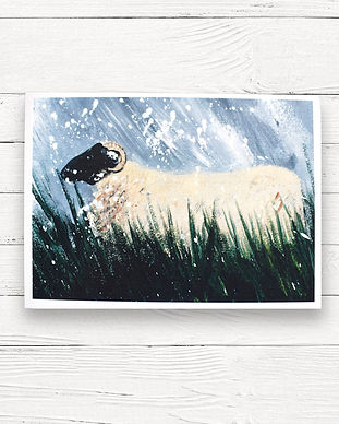 cards-A6 sheepy snow.jpg