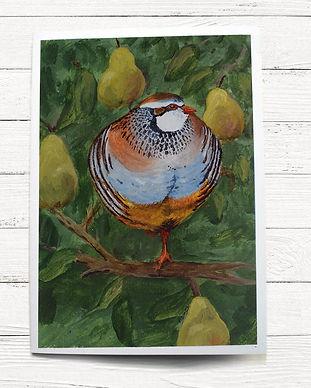 A6 card-quail.jpg