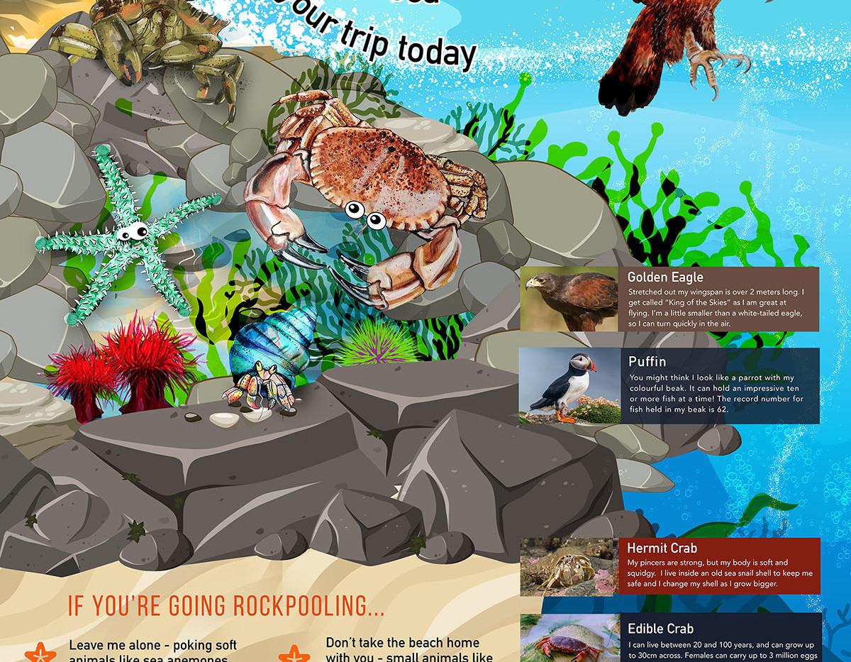 wall 02 -website.jpg