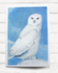 A6 card-owl.jpg