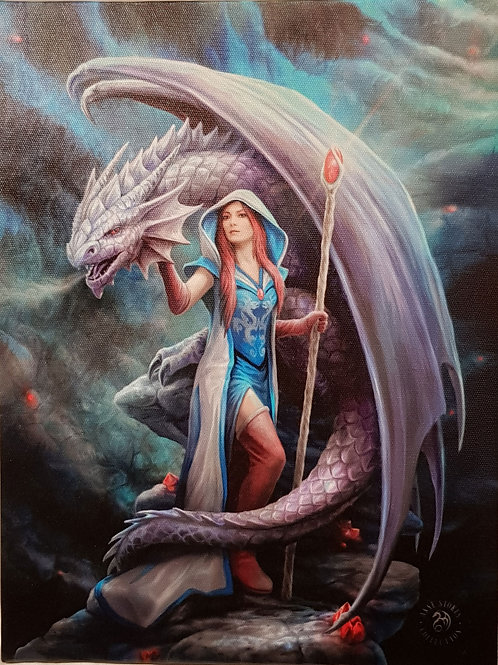 Anne Stokes Wall Plaque Dragon Mage