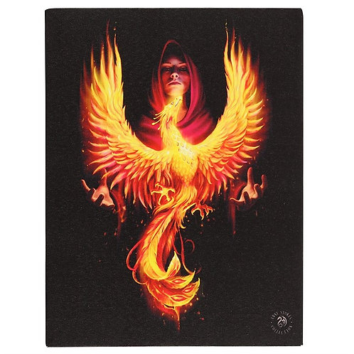 Anne Stokes Wall Plaque Phoenix Rising