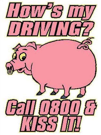 MA29 How's My Driving? Call 0800 & Kiss It Window Sticker