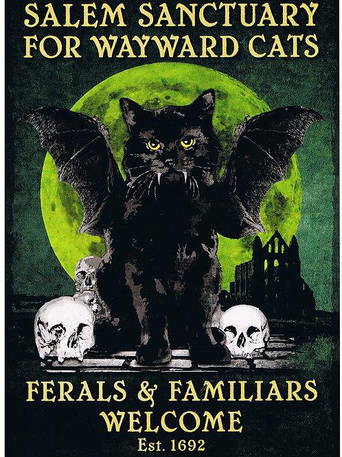 Salem Sanctuary for Wayward Cats Card