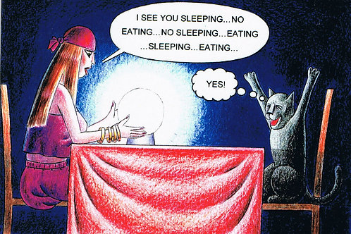 Devil Cat Greeting Card....I See You Sleeping..No Eating...