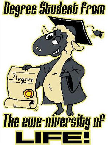 SH17 Degree Student From The Ewe-niversity Of Life! Window Sticker