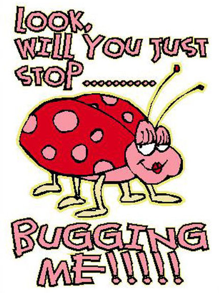 MA35 Look will You Just Stop Bugging Me!!! Window Sticker