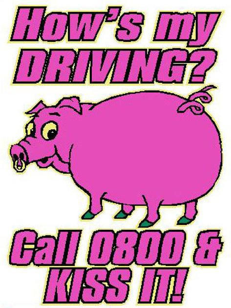 USR26  How's My Driving? Call 0800 & Kiss It! Window Sticker