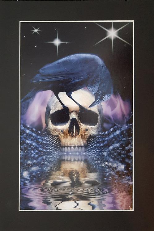 Skull & Raven Print