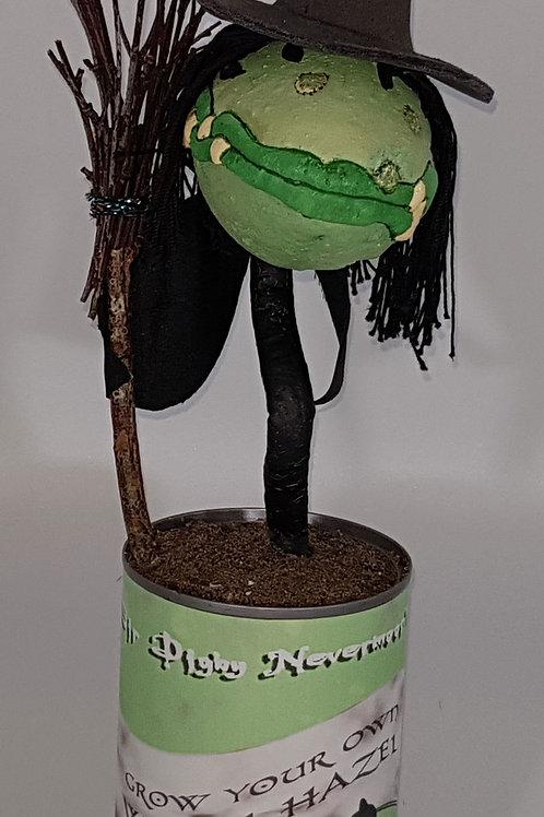 Bloomin' Horrors Witch Hazel