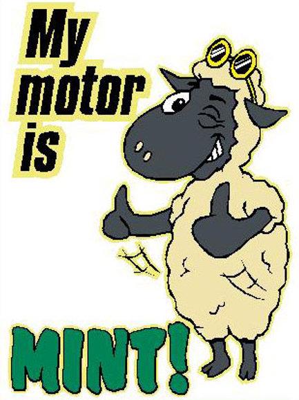 SH25 My Motor Is Mint Window Sticker