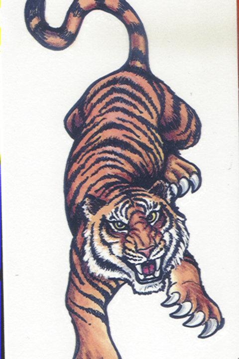 Tiger Flame  Armband Tattoo