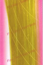 High Lights Hair Extensions (Yellow)