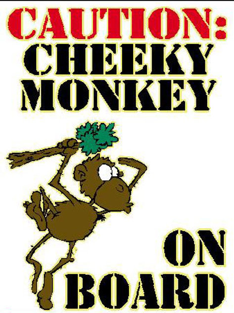 USR33 Caution: Cheeky Monkey On Board Window Sticker