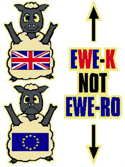 SH19 Ewe-K  Not Ewe-Ro Window Sticker