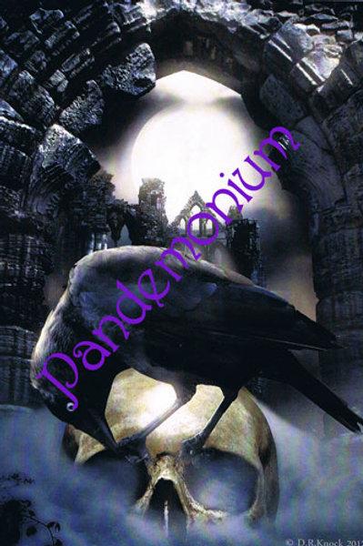 Raven On Skull Whitby Card