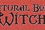 PWD12 Natural Born Witch Window Sticker