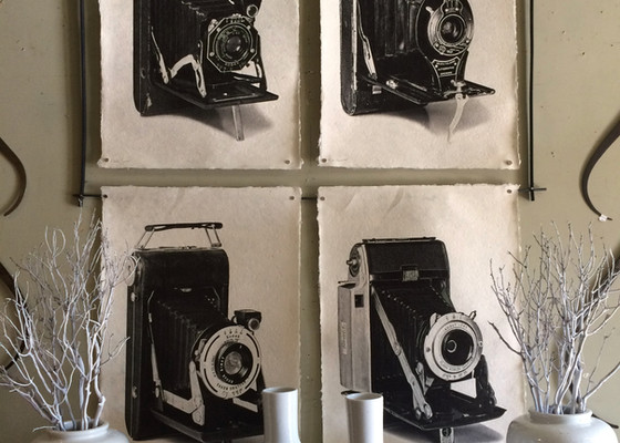 Camera prints, whie vases with sticks.