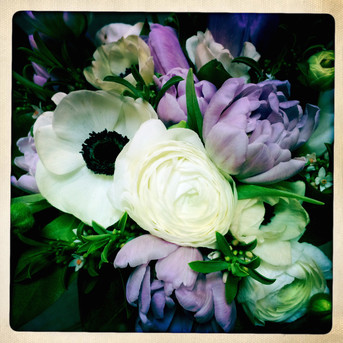 Anenome, garden roses and tulips