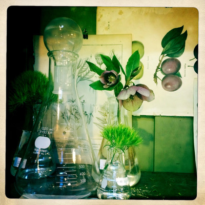 Glass beakers with floral prints