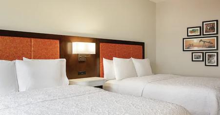 dalhs-2-double-beds-02.webp