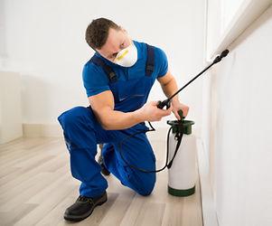Male worker spraying pesticide on window